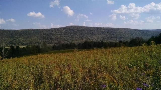 4073 County Highway 33, Cherry Valley, NY 13320 (MLS #S1096675) :: Thousand Islands Realty