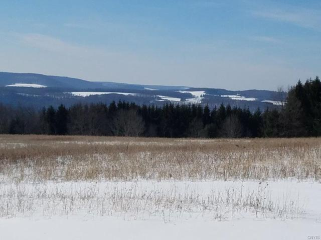 00 Schrader Road, Wellsville, NY 14895 (MLS #S1097043) :: Thousand Islands Realty