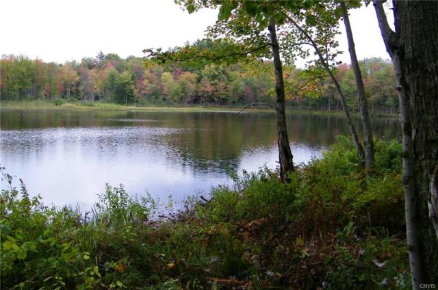 Lot #1 Lee Road #1, Florence, NY 13316 (MLS #S1097850) :: Thousand Islands Realty