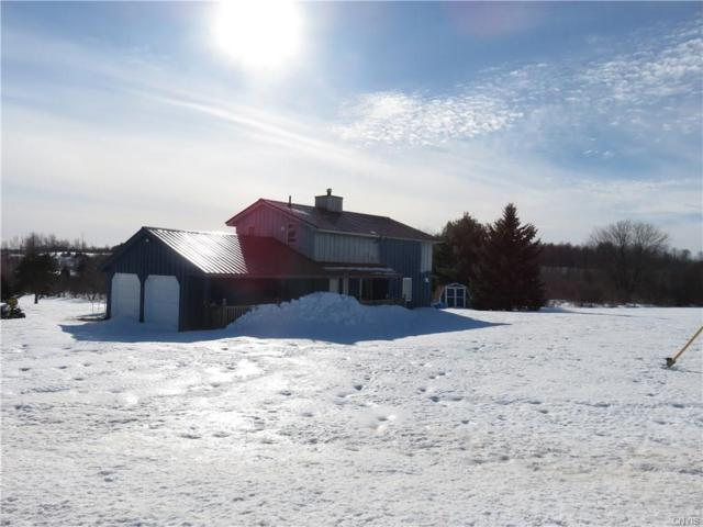 10265 Plank Road, Denmark, NY 13626 (MLS #S1098169) :: The Chip Hodgkins Team