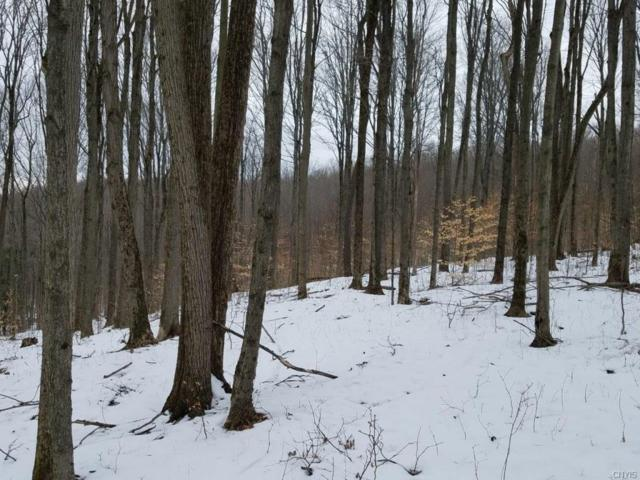 00 Co Road 18, Wellsville, NY 14895 (MLS #S1100419) :: Thousand Islands Realty