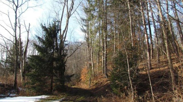 35 State Route 38, Harford, NY 13835 (MLS #S1101455) :: Thousand Islands Realty