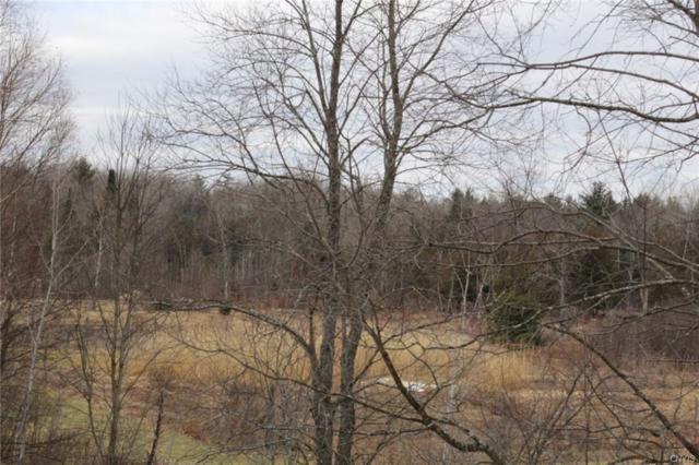 0 Co Route 41, Wilna, NY 13665 (MLS #S1101852) :: The Chip Hodgkins Team