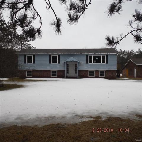 14445 Hands Flat Road, Diana, NY 13648 (MLS #S1101913) :: The Rich McCarron Team