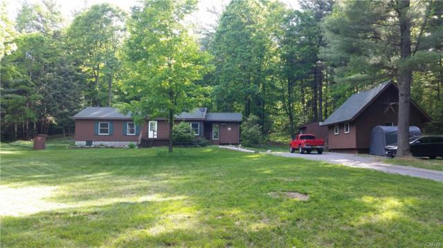 13779 French Settlement Road, Diana, NY 13648 (MLS #S1102183) :: The Rich McCarron Team