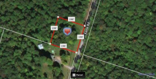 0 Kaine Road, Williamstown, NY 13302 (MLS #S1104601) :: The Rich McCarron Team