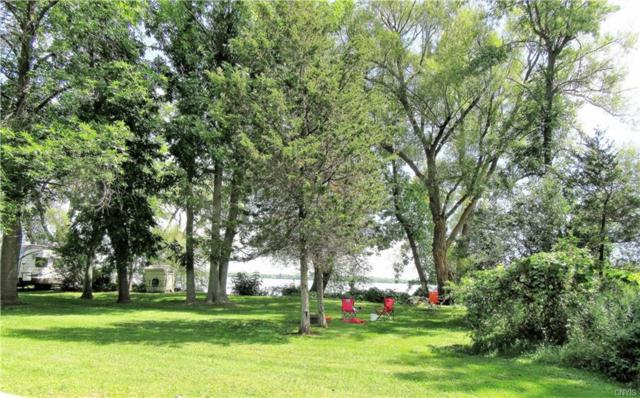 8591 State Park Road, Lyme, NY 13693 (MLS #S1104740) :: The Chip Hodgkins Team