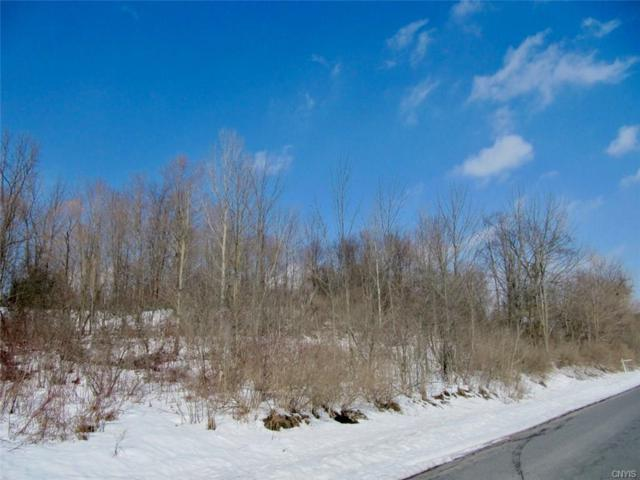3067 Brewer Road, Marcellus, NY 13110 (MLS #S1105672) :: Updegraff Group