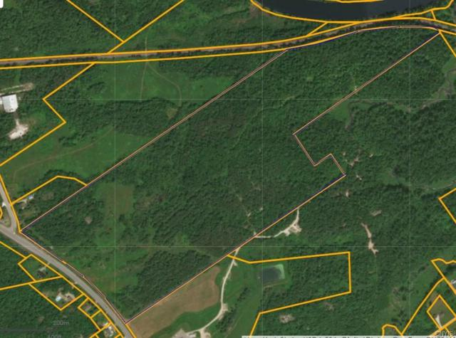 0 Sh 58, Fowler, NY 13642 (MLS #S1107108) :: Updegraff Group