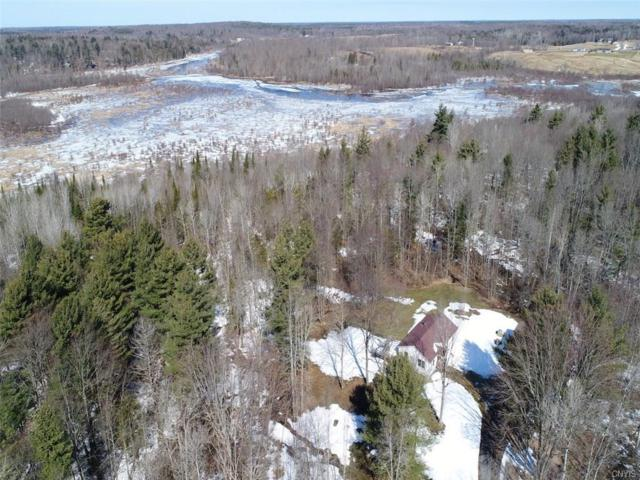 23411 County Route 42 Road, Wilna, NY 13619 (MLS #S1108789) :: Thousand Islands Realty