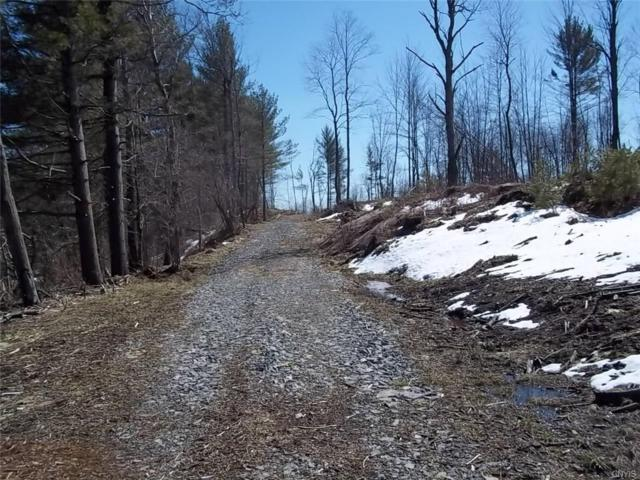 0 Old State Rd, Croghan, NY 13620 (MLS #S1110688) :: BridgeView Real Estate Services