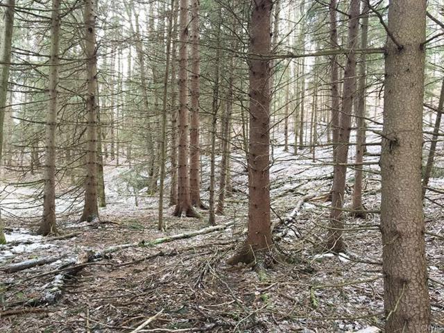 5393 County Route 17, Friendship, NY 14739 (MLS #S1110937) :: Thousand Islands Realty