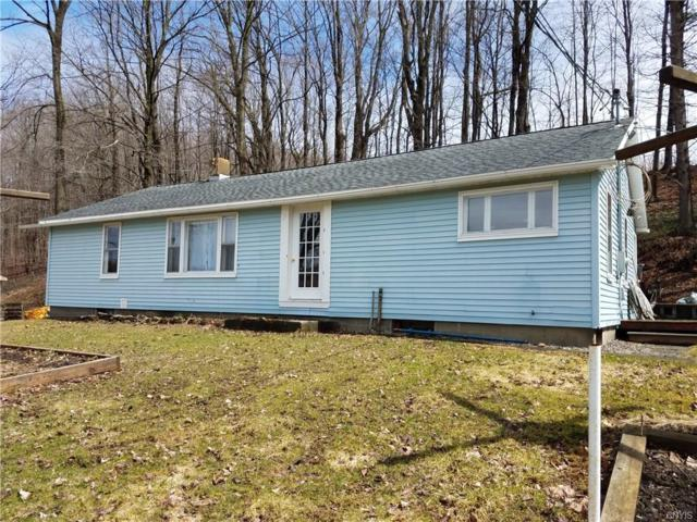 6776 State Route 41, Scott, NY 13077 (MLS #S1111130) :: Robert PiazzaPalotto Sold Team