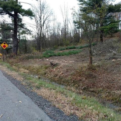 0 Baker Hill Road, Dryden, NY 13068 (MLS #S1111497) :: Thousand Islands Realty
