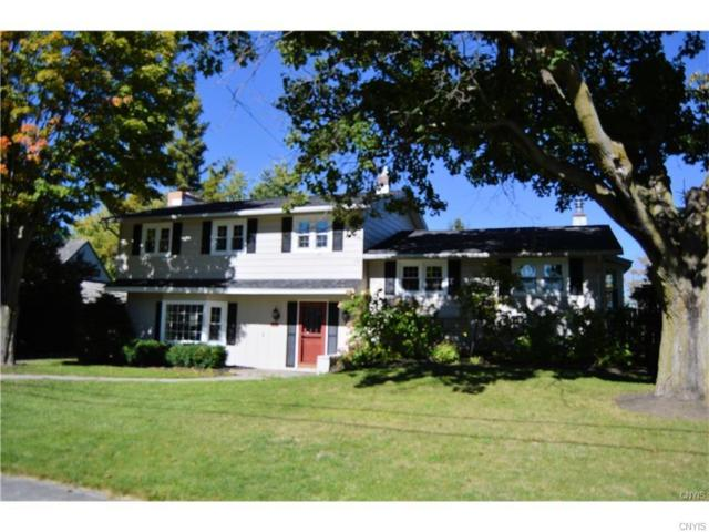 442 Harris Drive, Watertown-City, NY 13601 (MLS #S1112071) :: BridgeView Real Estate Services