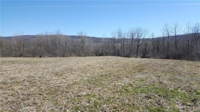 2340 Tully Farms Road, Lafayette, NY 13084 (MLS #S1112345) :: The CJ Lore Team | RE/MAX Hometown Choice