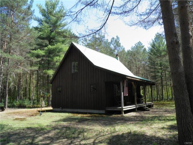 0 Town Line Road Road, Lewis, NY 13368 (MLS #S1113687) :: The CJ Lore Team | RE/MAX Hometown Choice