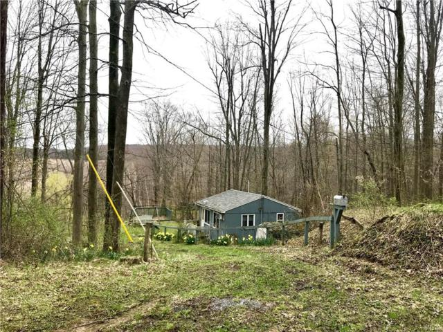 15030 E Creek Road, Sterling, NY 13156 (MLS #S1115589) :: The CJ Lore Team | RE/MAX Hometown Choice