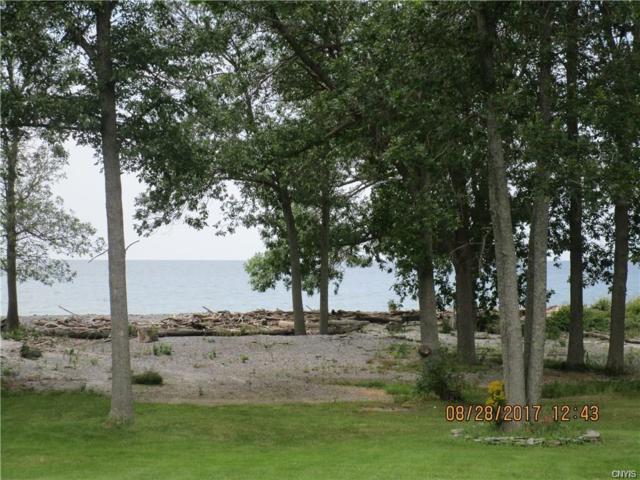 4239 Jackson Lane, Henderson, NY 13650 (MLS #S1116425) :: Thousand Islands Realty