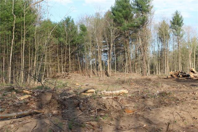 0 Nys Rte 3, Rutland, NY 13638 (MLS #S1117245) :: The CJ Lore Team | RE/MAX Hometown Choice