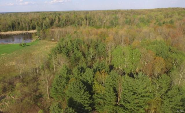 00 Co Rt 12, Schroeppel, NY 13135 (MLS #S1119017) :: Thousand Islands Realty
