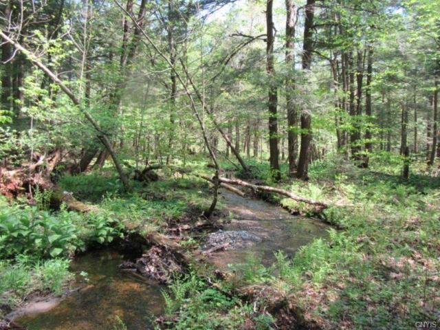 00 State Route 13, Williamstown, NY 13302 (MLS #S1119576) :: Thousand Islands Realty