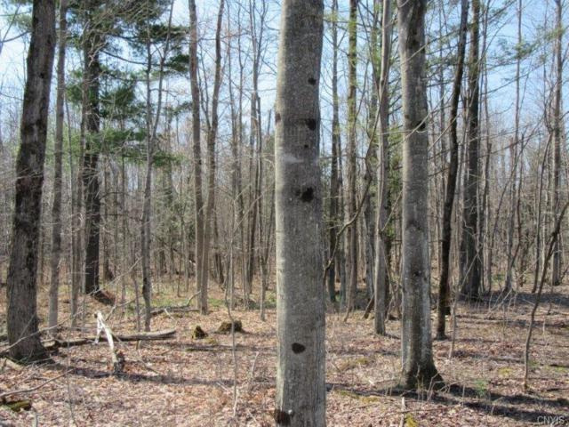 00 Off County Route 47, Stockholm, NY 13696 (MLS #S1121286) :: The Rich McCarron Team
