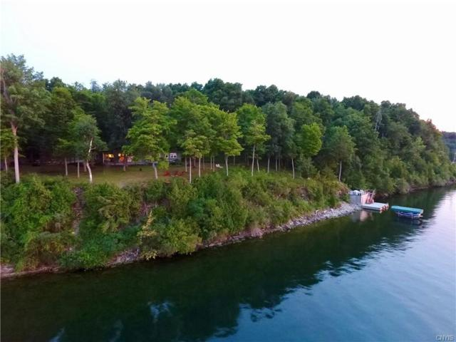 13474 Paradise Park Extension, Henderson, NY 13651 (MLS #S1123100) :: Robert PiazzaPalotto Sold Team