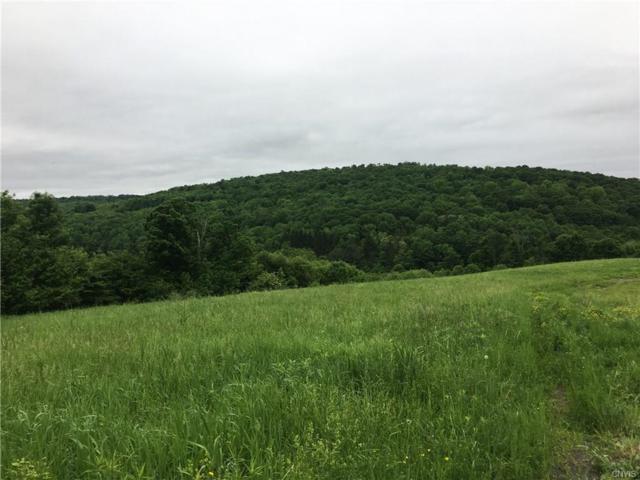 0 County Road 21, Smyrna, NY 13464 (MLS #S1123153) :: Updegraff Group