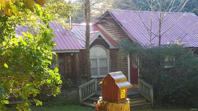 758 Beaver Meadow Road, Smyrna, NY 13464 (MLS #S1123430) :: Updegraff Group