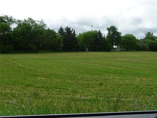 0 Grove Street, Ellisburg, NY 13636 (MLS #S1124130) :: Robert PiazzaPalotto Sold Team