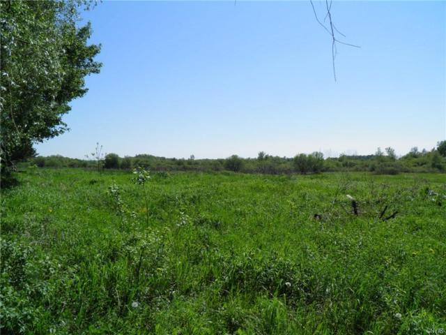 0 Cr 62 Road, Hounsfield, NY 13601 (MLS #S1124701) :: Robert PiazzaPalotto Sold Team