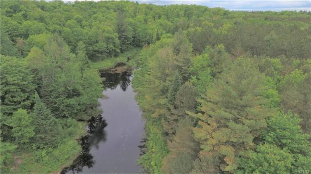 11493 State Route 812, Croghan, NY 13327 (MLS #S1124791) :: Thousand Islands Realty