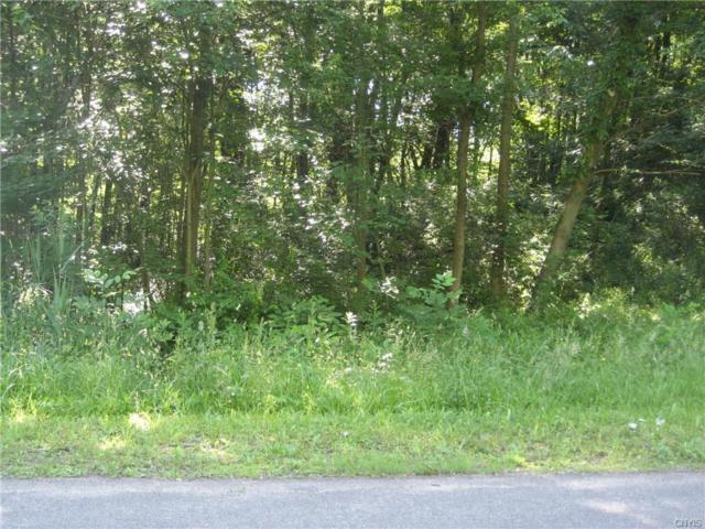 lot 3 Wood Ridge Lane, Volney, NY 13069 (MLS #S1124975) :: Robert PiazzaPalotto Sold Team