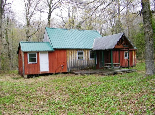 0 Peeky Drive, Redfield, NY 13437 (MLS #S1125189) :: Updegraff Group