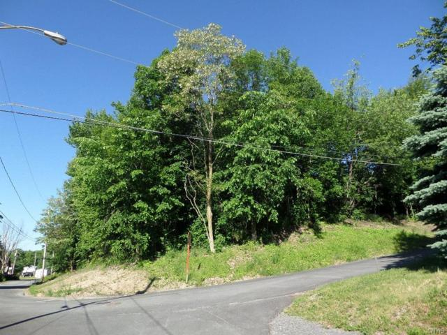 0 Maynard Avenue, Brownville, NY 13615 (MLS #S1125367) :: Thousand Islands Realty