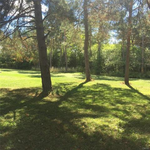 31132 County Route 179, Clayton, NY 13622 (MLS #S1126058) :: BridgeView Real Estate Services