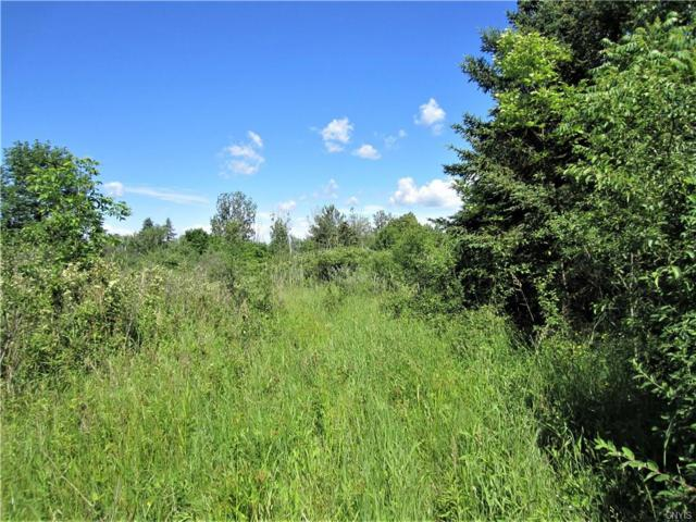 lot 1 Henneberry Road, Pompey, NY 13138 (MLS #S1127052) :: Robert PiazzaPalotto Sold Team