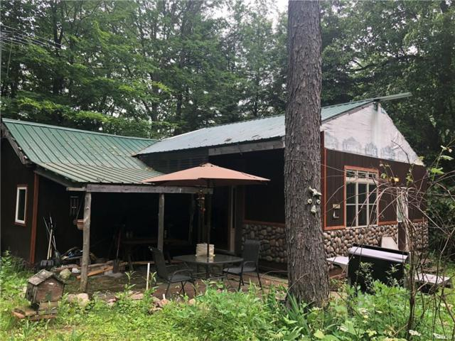 5609 Lewisburg Extension Road, Diana, NY 13665 (MLS #S1127156) :: Thousand Islands Realty