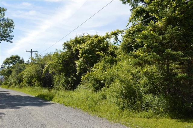 3350 Stony Point Lane, Henderson, NY 13650 (MLS #S1127322) :: Robert PiazzaPalotto Sold Team