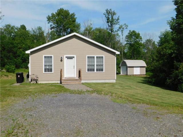 333 Wood Road, Dryden, NY 13068 (MLS #S1127403) :: The CJ Lore Team | RE/MAX Hometown Choice