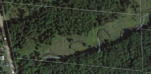2874 State Route 3, Ellisburg, NY 13650 (MLS #S1127819) :: BridgeView Real Estate Services