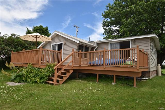 20627 Hess Shore Drive, Hounsfield, NY 13685 (MLS #S1128735) :: Robert PiazzaPalotto Sold Team