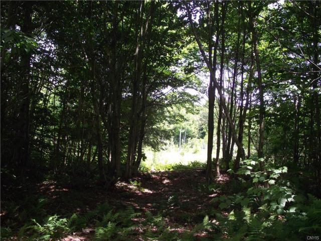 Lot 3 Swancott Mills Subd #3, Annsville, NY 13471 (MLS #S1130754) :: Thousand Islands Realty