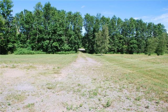 0 State Route 69, Mexico, NY 13114 (MLS #S1131230) :: The Rich McCarron Team