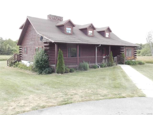 46865 Log Hill Road, Alexandria, NY 13607 (MLS #S1131420) :: The Chip Hodgkins Team