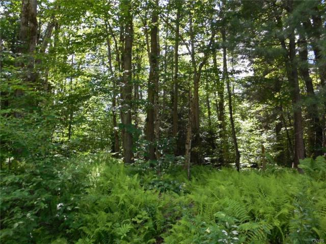 343 & 365 Mccaw Road, Redfield, NY 13437 (MLS #S1131999) :: Thousand Islands Realty