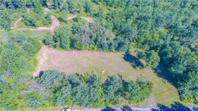 34050 Co Route 46, Theresa, NY 13691 (MLS #S1132636) :: The Chip Hodgkins Team