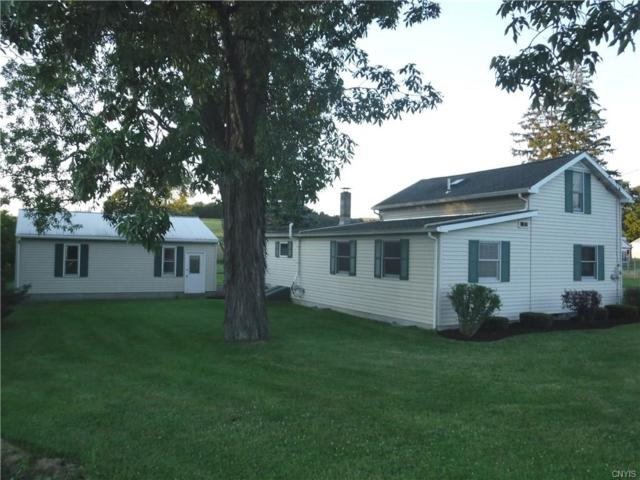 1253 State Route 392, Virgil, NY 13045 (MLS #S1132703) :: The Chip Hodgkins Team