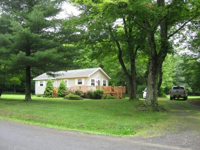 279 Barnes Hill Road, Newfield, NY 14867 (MLS #S1132781) :: Thousand Islands Realty